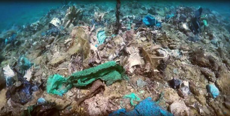 """Αποτύπωση του """"πλαστικού υφάλου"""" της Άνδρου από την ΚοινΣΕπ Aegean Rebreath"""